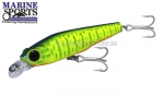 Isca Artificial Marine Sports Samma Minnow 70 - 7cm 8g